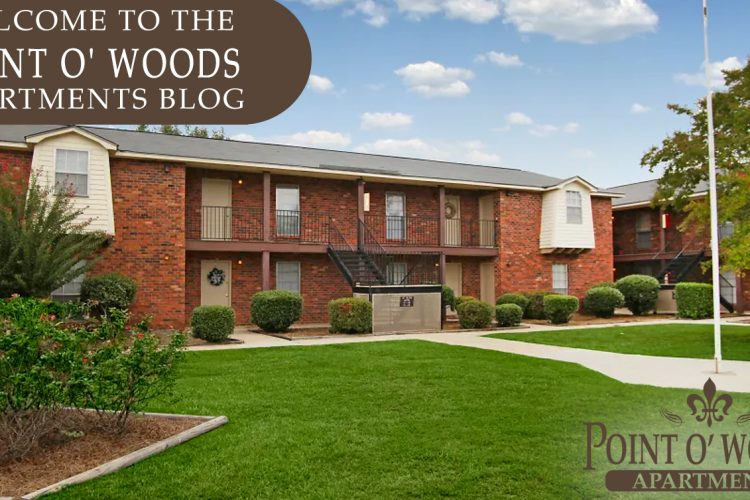 Welcome to the Point O'Woods Apartments Blog