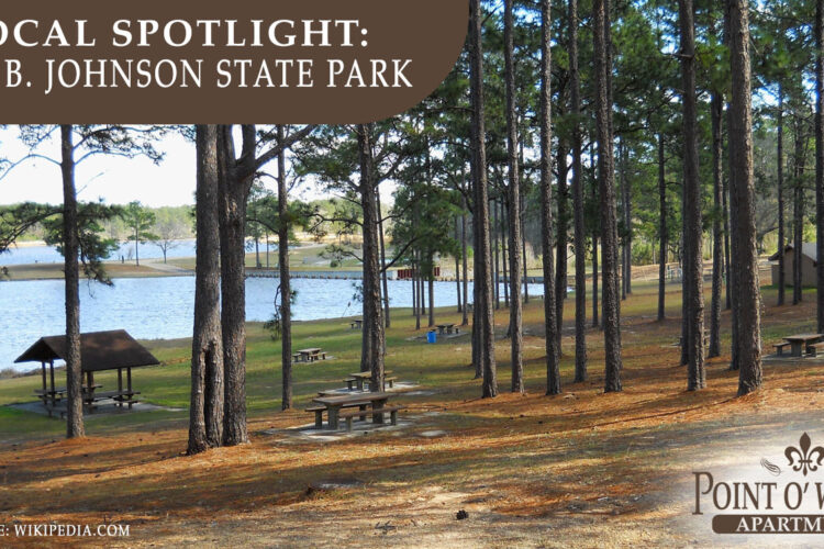 Local Spotlight: Paul B. Johnson State Park